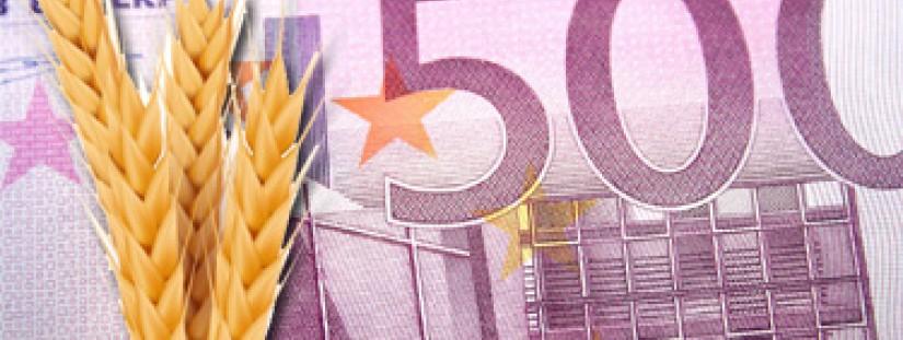 e50500f747 Borsa Merci di Torino. Contrattazioni fra operatori dei settori di  produzione, trasformazione, commercio, intermediazione e servizi di  cereali, legumi, ...